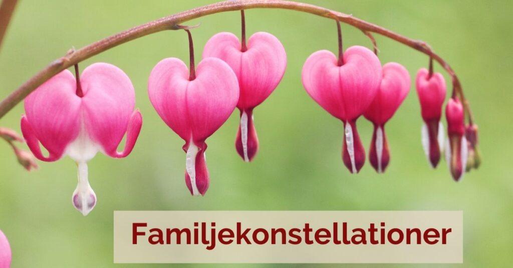 familjekonstellationer Candra Karlholm